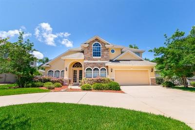 Ormond Beach Single Family Home For Sale: 3 Lionshead Drive