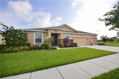 Deland Single Family Home For Sale: 410 E Victoria Trails Boulevard