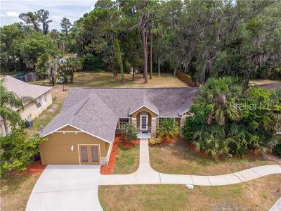 Debary Single Family Home For Sale: 339 Debary Avenue
