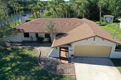 Ormond Beach Single Family Home For Sale: 363 Putnam Avenue