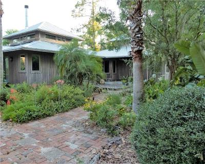 Deland Single Family Home For Sale: 810 Island Grove Drive