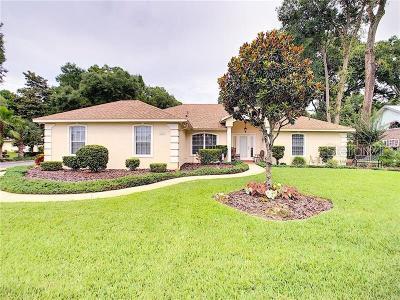 Deland Single Family Home For Sale: 1116 Glen Falls Road