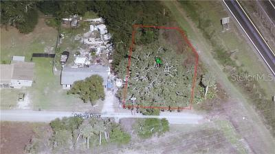 Debary Residential Lots & Land For Sale: 316 Debary Drive