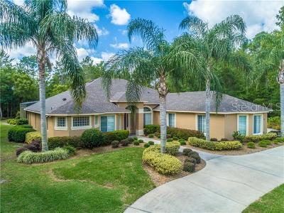 Deland Single Family Home For Sale: 2679 Winnemissett Oaks Drive