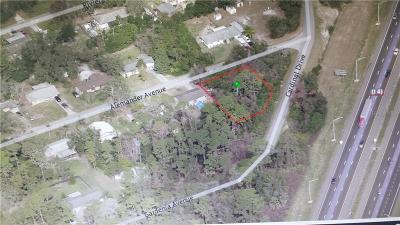 Debary Residential Lots & Land For Sale: 343 Alemander Avenue