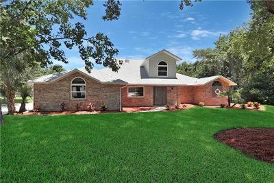 Port Orange Single Family Home For Sale: 703 Hensel Hill Road E