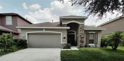 Deland  Single Family Home For Sale: 204 Brooklands Way