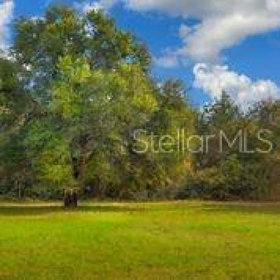 Volusia County Residential Lots & Land For Sale: Lake Ruby Road