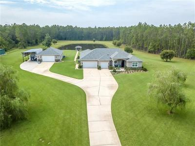 New Smyrna Beach, Daytona Beach, Cocoa Beach Single Family Home For Sale: 4450 Sr- 44