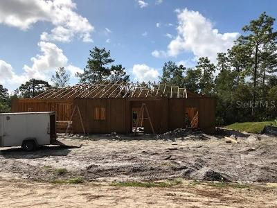 Deland Single Family Home For Sale: 2790 Nectarine Road
