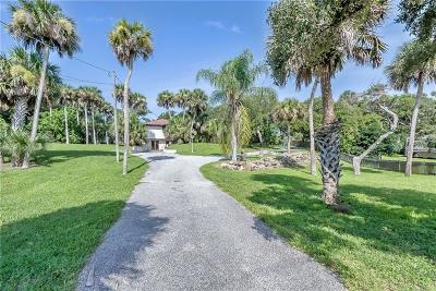 Daytona, Daytona Beach, Daytona Beach Shores, De Leon Springs, Flagler Beach Single Family Home For Sale: 2752 S Peninsula Drive