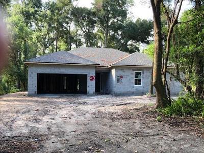 Orange City Single Family Home For Sale: 720 E Wisconsin Avenue