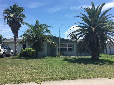 Ormond Beach Single Family Home For Sale: 18 San Jose Drive