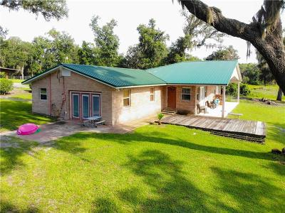 Daytona, Daytona Beach, Daytona Beach Shores, De Leon Springs, Flagler Beach Single Family Home For Sale: 4423 Cave Lake Road