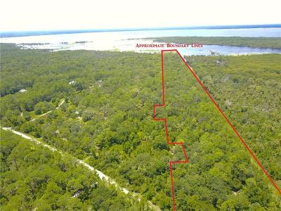 Seminole County, Volusia County Residential Lots & Land For Sale: 1400 Gopher Slough Road