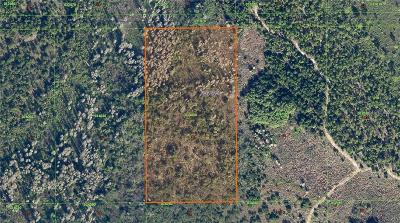 Polk City Residential Lots & Land For Sale: No Name