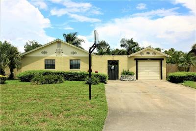 Deltona Single Family Home For Sale: 1042 Angora Street
