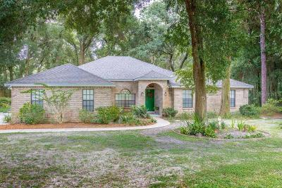 Deland  Single Family Home For Sale: 1064 Torchwood Drive