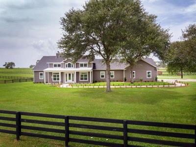Ocala Single Family Home For Sale: 5566 SW 140th Avenue