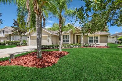 Ormond Beach Single Family Home For Sale: 49 Canterbury Woods