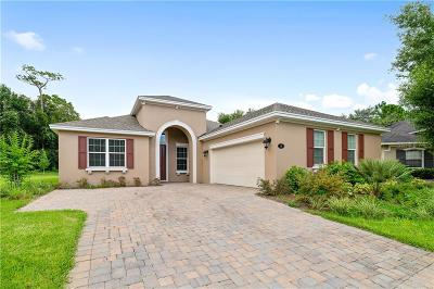 Deland  Single Family Home For Sale: 149 Birchmont Drive