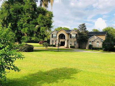Ocala Single Family Home For Sale: 9039 SE 7th Avenue Road SE