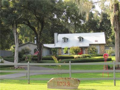 Deland  Single Family Home For Sale: 1033 Deerfoot Road