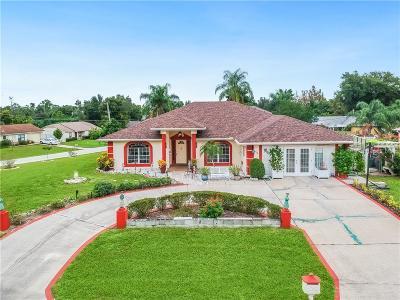 Deltona Single Family Home For Sale: 410 Rockford Street