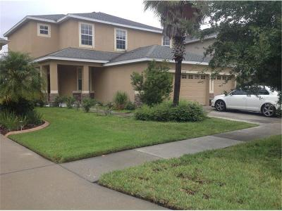 Hernando County, Hillsborough County, Pasco County, Pinellas County Single Family Home For Sale: 20228 Merry Oak Avenue