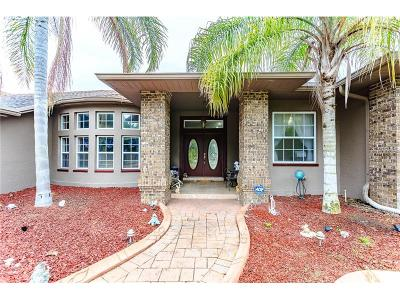 New Port Richey Single Family Home For Sale: 9774 Lakeview Drive