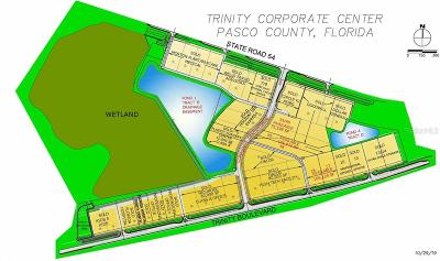 Trinity Residential Lots & Land For Sale: 38/39 Corporate Center Drive