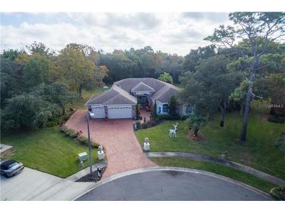 Hudson Single Family Home For Sale: 14202 Pepperwood Court