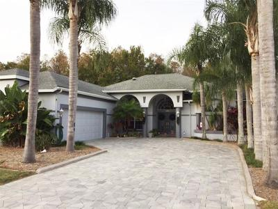 Hernando County, Hillsborough County, Pasco County, Pinellas County Single Family Home For Sale: 1479 Haverhill Drive