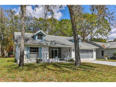 Hernando County Single Family Home For Sale: 6511 Ocean Pines Lane