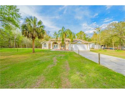 Hernando County Single Family Home For Sale: 19467 Hidden Oaks Drive