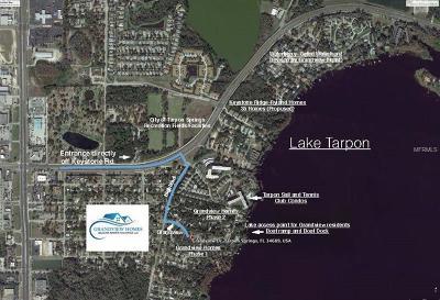 Tarpon Springs Single Family Home For Sale: 1508 Grandview Drive