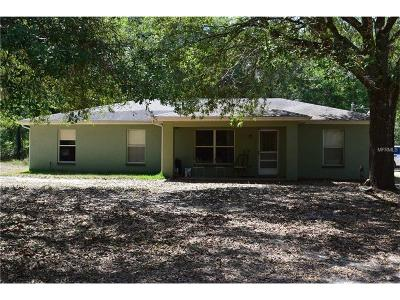 Hernando County Single Family Home For Sale: 13439 Ponce De Leon Boulevard