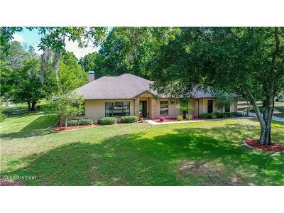 Brooksville Single Family Home For Sale: 26125 Mountainview Boulevard