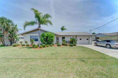 Hernando Beach Single Family Home For Sale: 3367 Flamingo Boulevard