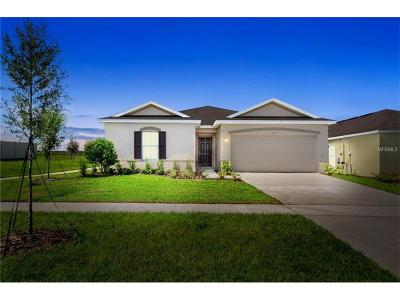 Wimauma, Wimauma` Single Family Home For Sale: 14458 Haddon Mist Drive