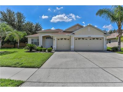 Hernando County Single Family Home For Sale: 11716 New Britain Drive