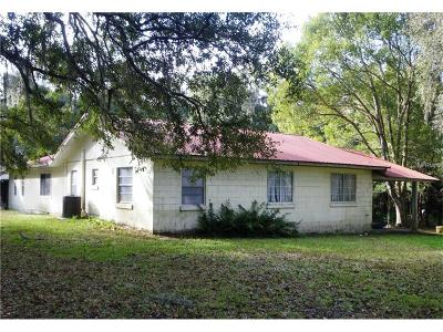 Hernando County Single Family Home For Sale: 7291 Mitchell Road