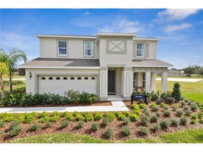 Apopka Single Family Home For Sale: 2167 White Dahlia Drive