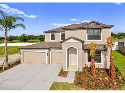 Deland Single Family Home For Sale: 1462 Chelsea Manor Circle