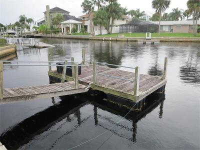 Port Richey Single Family Home For Sale: 5046 Waterside Drive