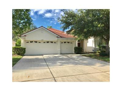 Hernando County, Hillsborough County, Pasco County, Pinellas County Single Family Home For Sale: 11609 Belle Haven Drive