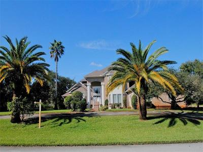 New Port Richey Single Family Home For Sale: 8825 Skymaster Drive