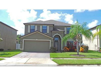 New Port Richey Single Family Home For Sale: 12528 Mountain Springs Place