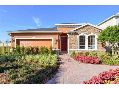 Riverview Single Family Home For Sale: 14113 Poke Ridge Drive