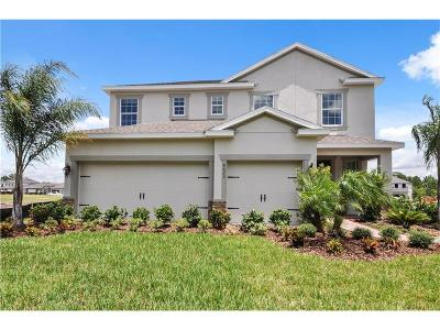 Riverview Single Family Home For Sale: 14109 Poke Ridge Drive
